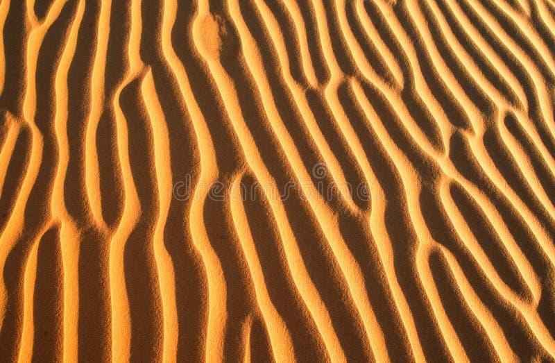 Goldene Sandkräuselungen auf dem Strand stockfotografie
