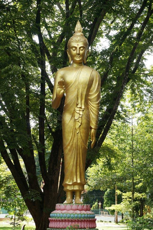 Goldene Statue von Buddha-Segen lizenzfreie stockbilder