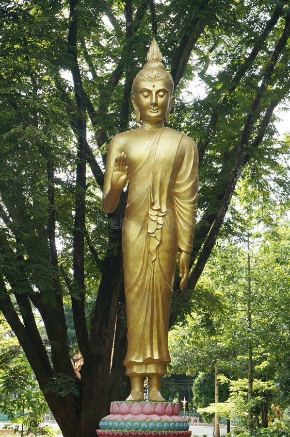 Goldene Statue von Buddha-Segen lizenzfreie stockfotografie