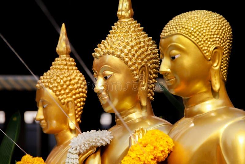 Goldene stehende Buddha-Statuen in Folge stockbilder