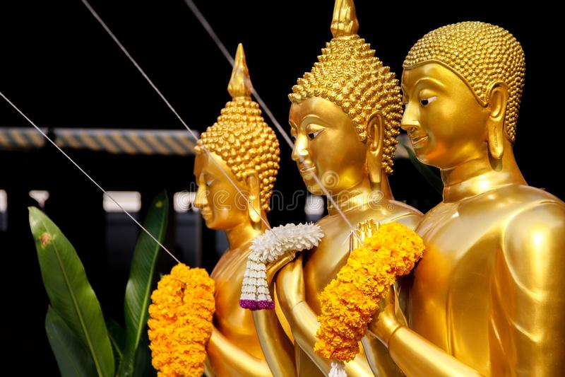 Goldene stehende Buddha-Statuen in Folge stockbild