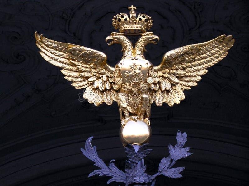 Goldener Adler stockfotografie