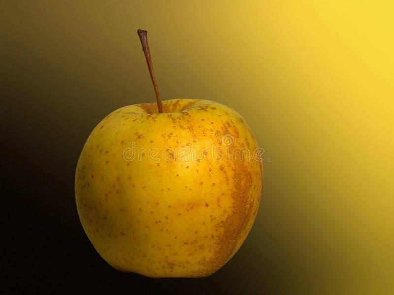 Goldener Apple Lizenzfreie Stockbilder