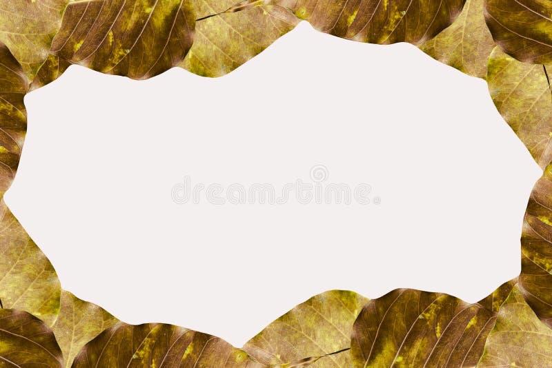 Goldener Blattmuster- und -kopienraumhintergrund stock abbildung