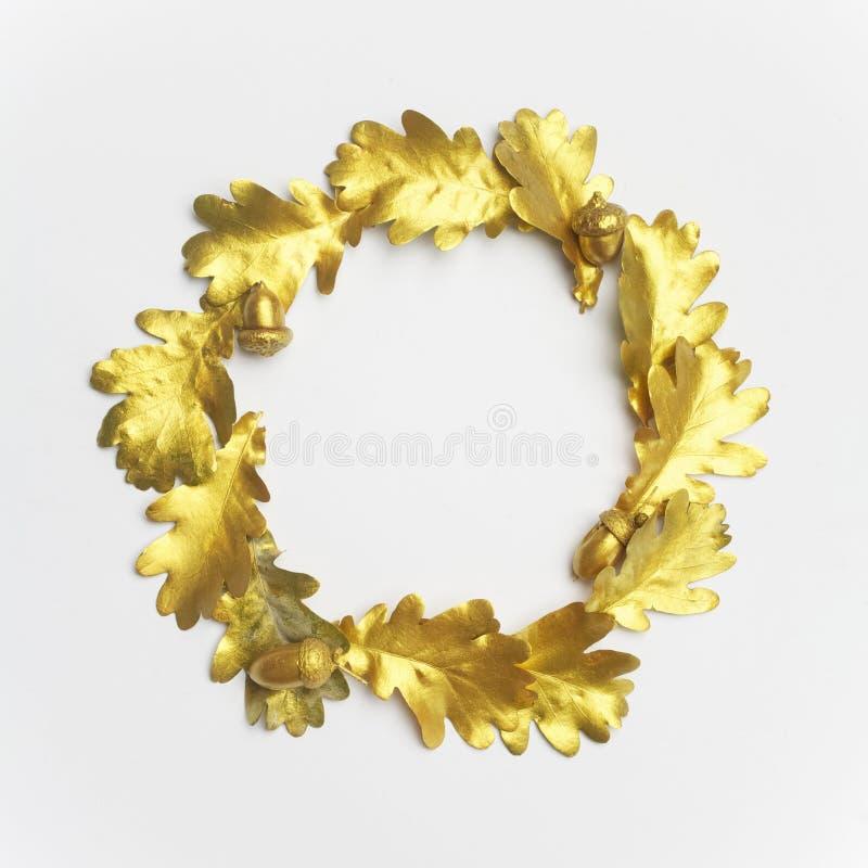 Goldener Eichenblattrahmen, auf hellgrauem Hintergrund Flache Lage lizenzfreies stockfoto