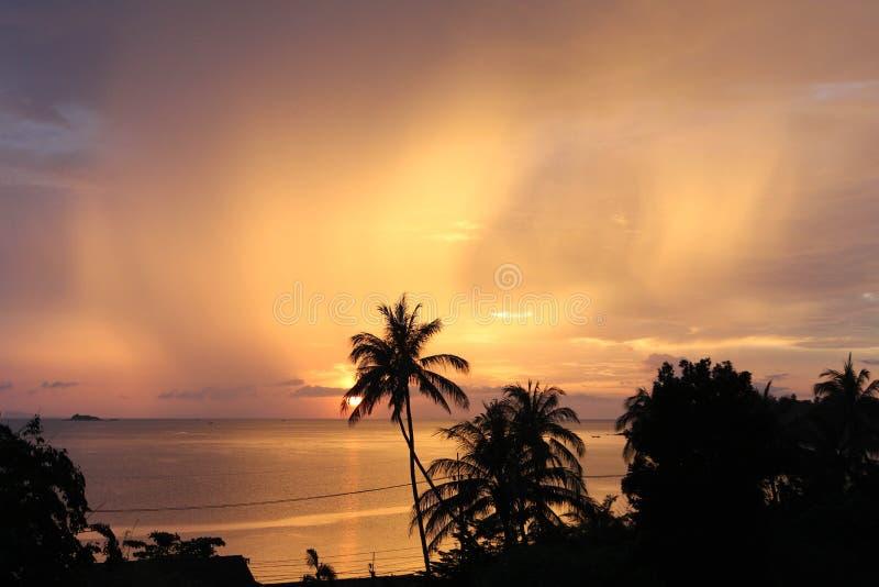 Goldener glänzender Sonnenuntergang stockbilder