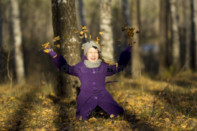 Goldener Herbst lizenzfreies stockfoto