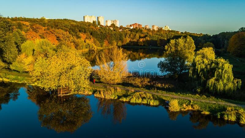 Goldener Herbsthintergrund, Luftbrummenansicht des Waldes mit gelben Bäumen und schöne Seelandschaft von oben genanntem, Kiew lizenzfreies stockfoto