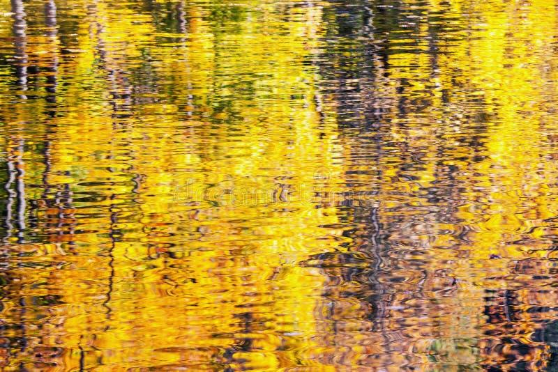 Goldener Herbstwasser-Reflexionshintergrund stockfotos