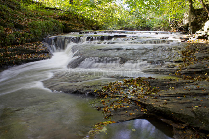Goldener Lochwasserfall, Holywell Dene, Northumberland stockfotografie