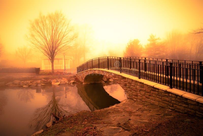 Goldener Morgen-Teich lizenzfreie stockfotografie