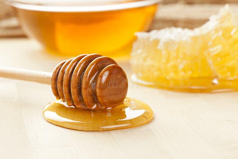 Goldener organischer Honig lizenzfreie stockbilder