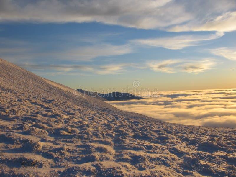 Goldener Schnee an der Dämmerung stockfotos