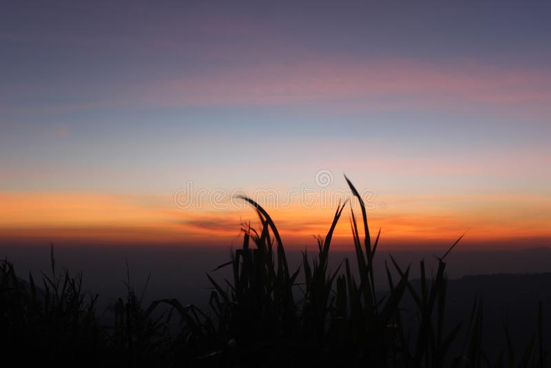 Goldener Sonnenaufgang stockfotos