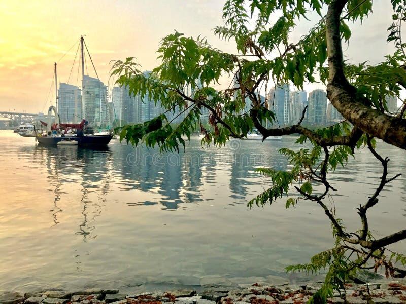Goldener Sonnenaufgang Vancouvers auf Pazifischem Ozean lizenzfreies stockfoto