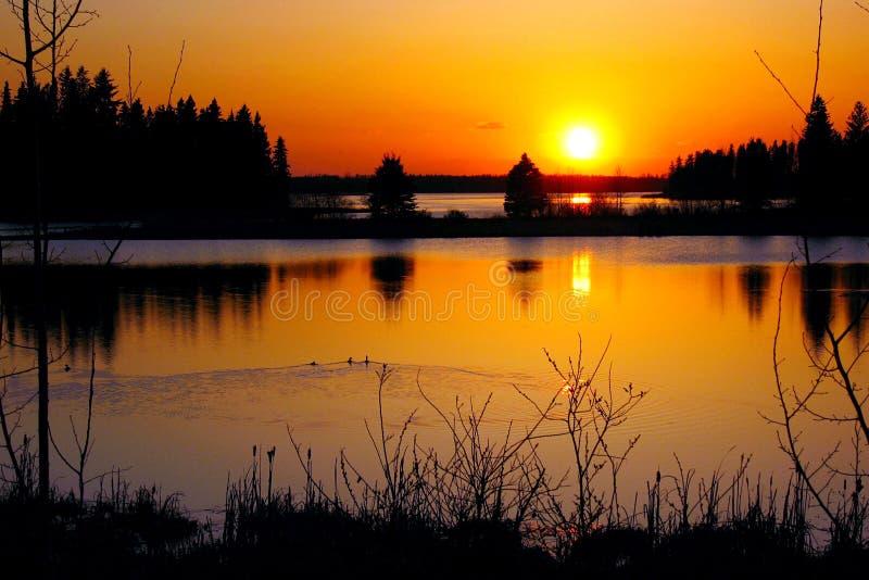 Goldener Sonnenuntergang über Astotin See, Elch-Insel Nationalpark, Alberta lizenzfreies stockbild