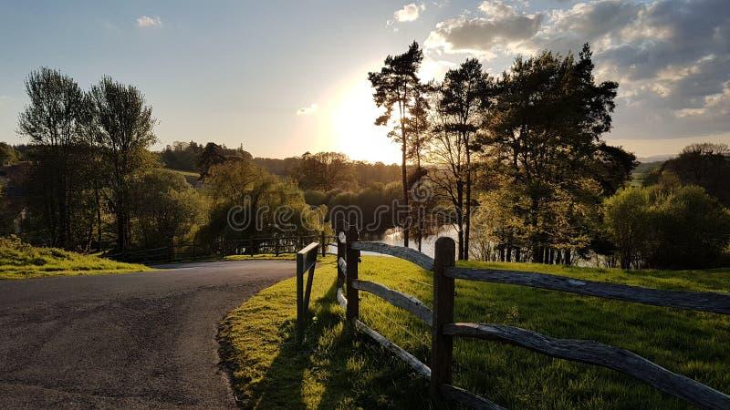 Goldener Sonnenuntergang über Teichzaun lizenzfreie stockbilder