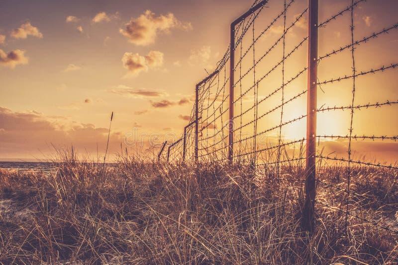 Goldener Sonnenuntergang hinter Stacheldraht stockbilder