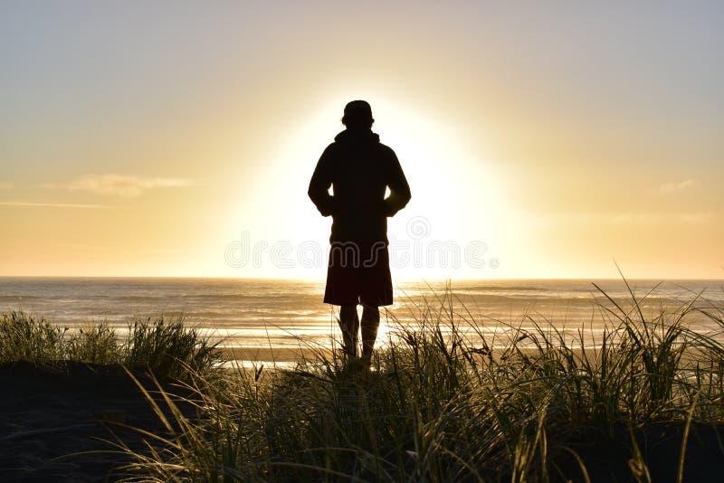 Goldener Sonnenuntergang in Neuseeland stockbilder