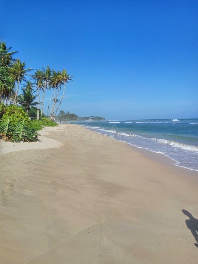 Goldener Strand im Indischen Ozean lizenzfreies stockfoto