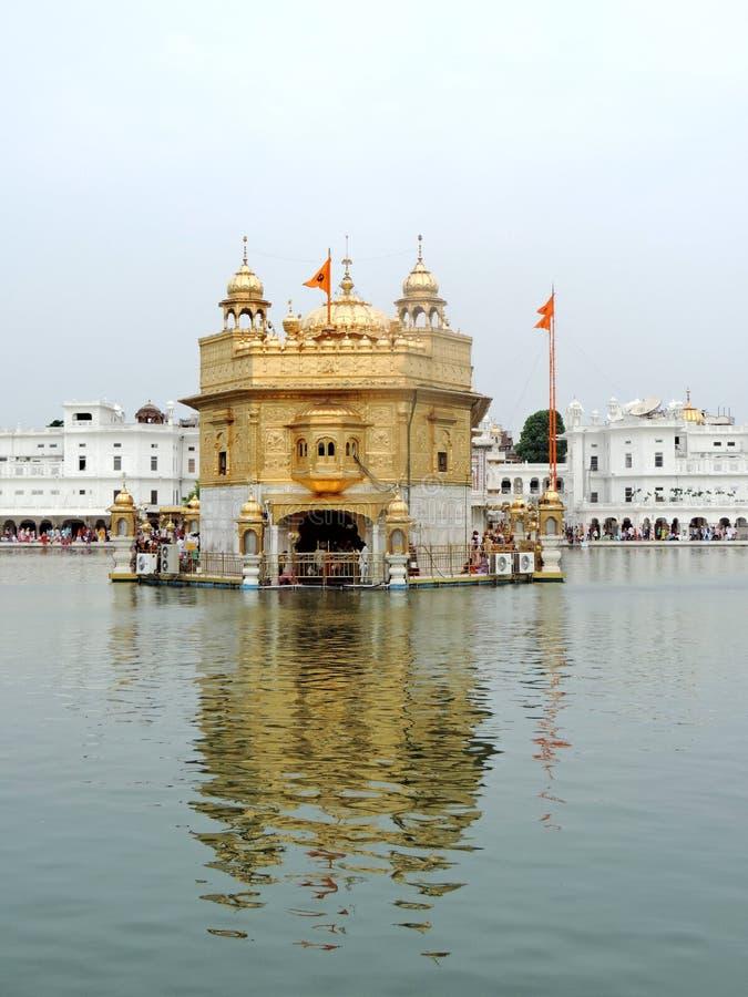 Goldener Tempel, Amritsar, Indien lizenzfreies stockbild