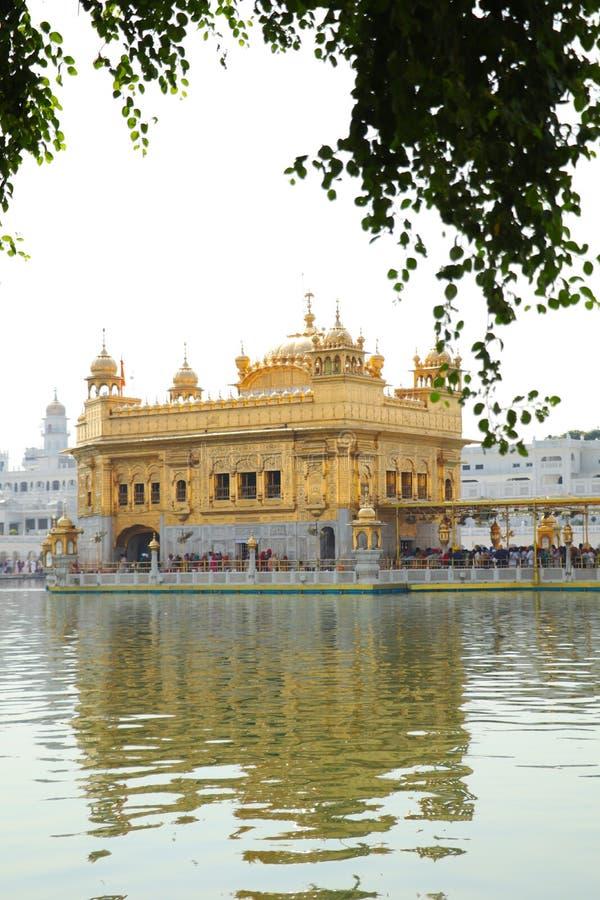 Goldener Tempel in Amritsar Indien stockfotos