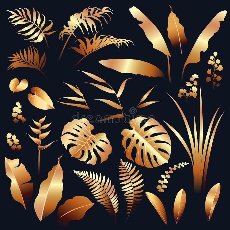 Goldener tropische Betriebssatz lizenzfreie abbildung