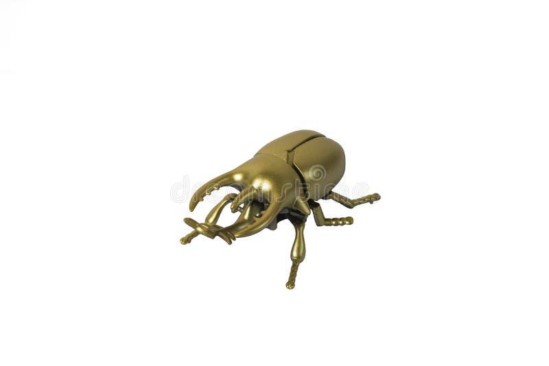 Goldener Wanzenscarabäus auf weißem Hintergrund lizenzfreie stockfotos