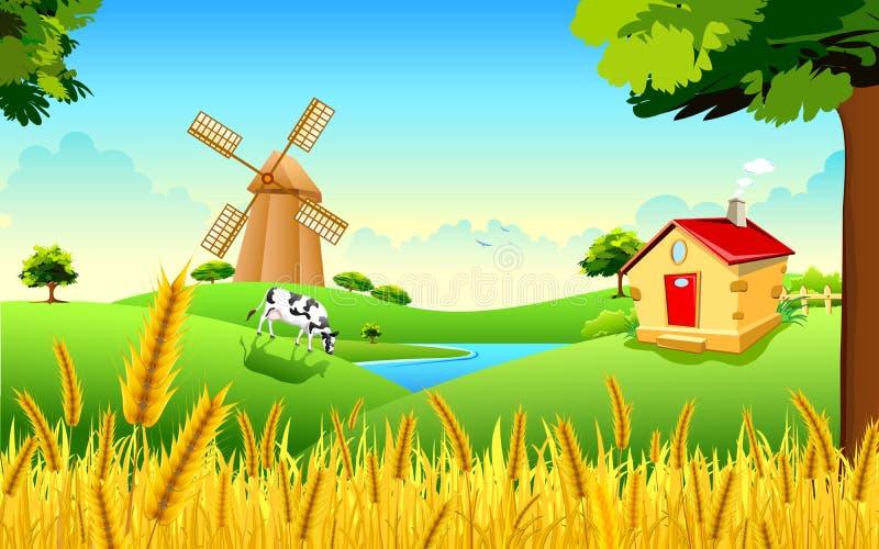 Goldener Weizen-Bauernhof stock abbildung