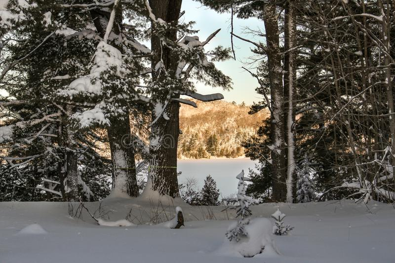 Goldener Winter-Sonnenaufgang auf feenhaftem See lizenzfreies stockbild