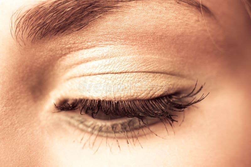 Goldenes Auge lizenzfreie stockbilder