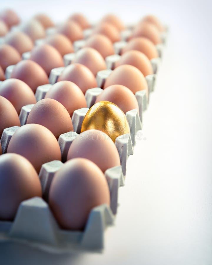 Goldenes Ei im Kasten - Wertkonzept lizenzfreies stockfoto