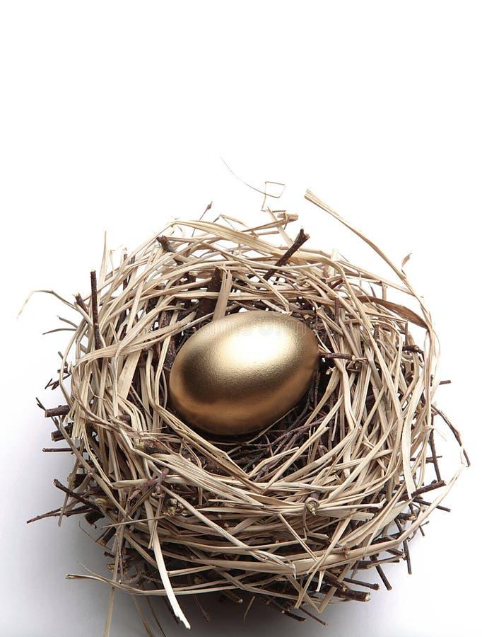 Goldenes Ei im Nest stockbild
