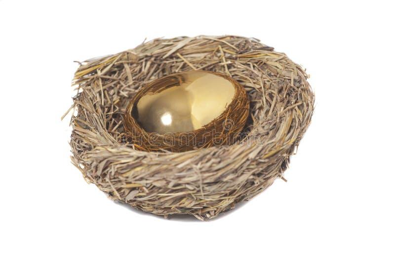 Goldenes Ei im Vogelnest auf Weiß stockfotografie