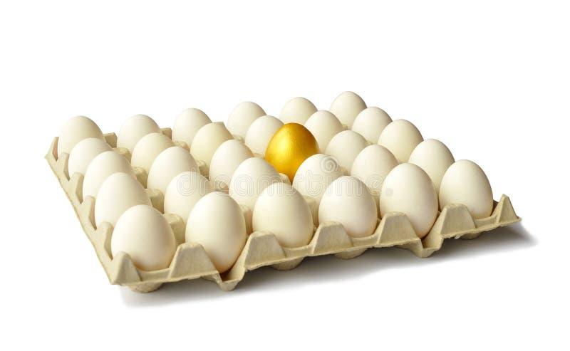 Goldenes Ei unter Hühnereiern auf Weiß lizenzfreie stockfotografie
