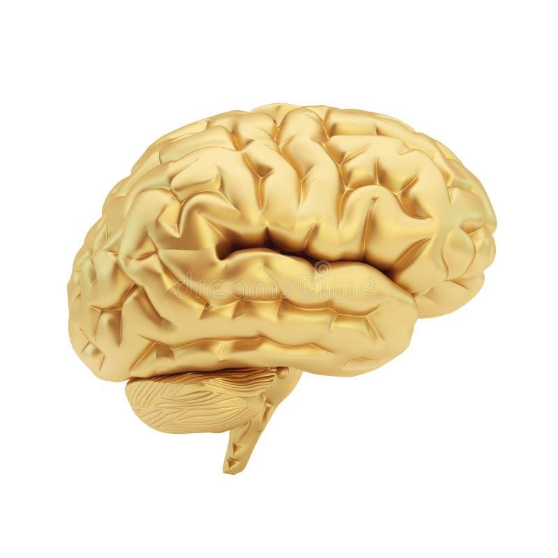 Goldenes Gehirn lokalisiert auf einem weißen Hintergrund. vektor abbildung