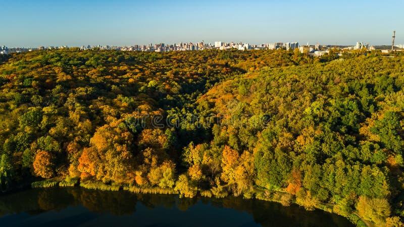 Goldenes Herbst Kiew-Stadtbild, Luftbrummenansicht von Stadtskylinen und -wald mit gelben Bäumen und schöne Landschaft von oben stockfotografie