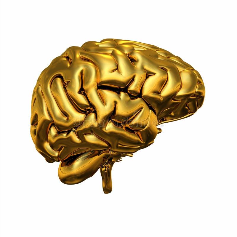 Goldenes menschliches Gehirn stock abbildung