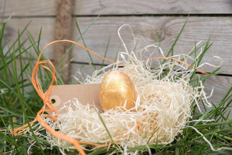 Goldenes Osterei in einem Versteck lizenzfreies stockfoto