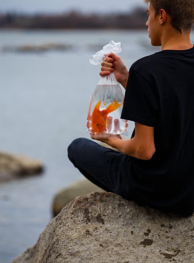 Goldfisch in einer Tasche in den Händen eines Jugendlichen auf dem Strand stockfoto