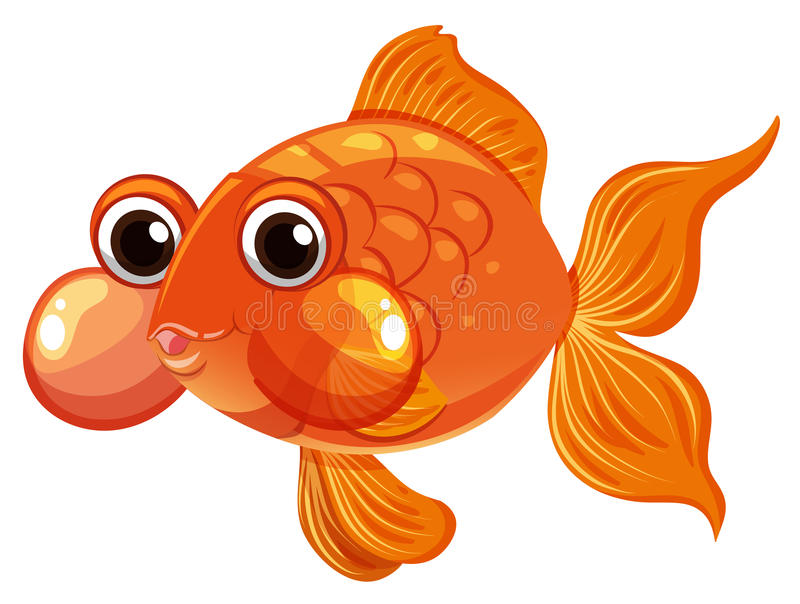 Goldfischschwimmen auf weißem Hintergrund lizenzfreie abbildung