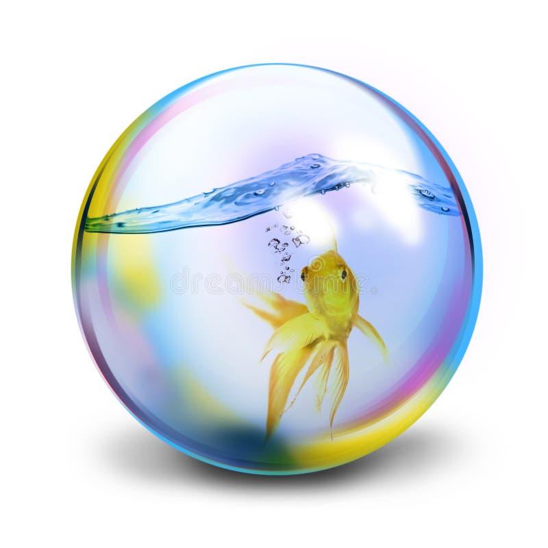 Goldfish. lizenzfreie abbildung