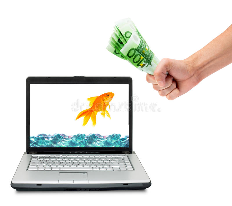 Download Goldfish stock photo. Image of counting, customer, euro - 11975392