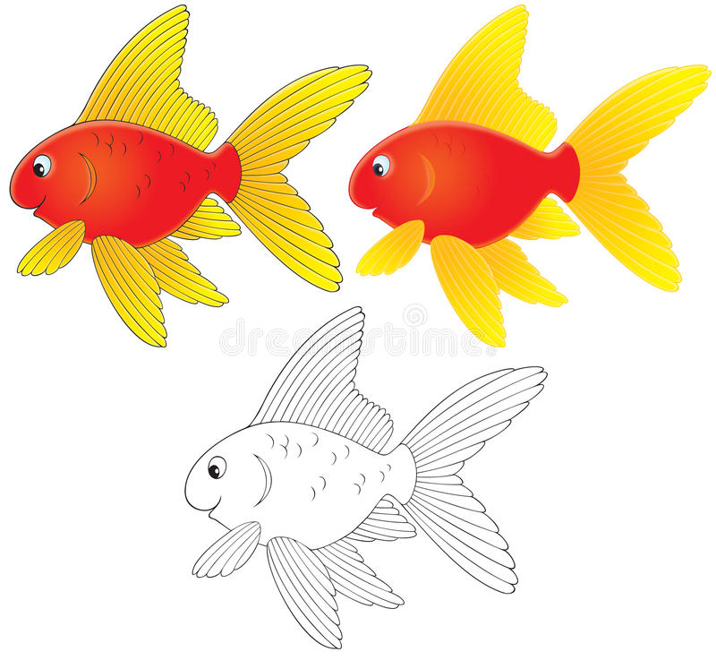 Goldfish illustration libre de droits