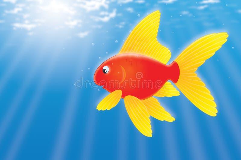 Download Goldfish ilustração stock. Ilustração de vida, colorida - 12808523