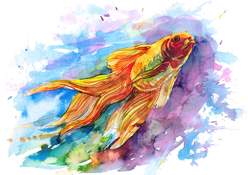 goldfish ελεύθερη απεικόνιση δικαιώματος