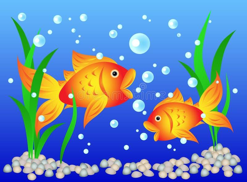 Goldfish in aquarium royalty free illustration