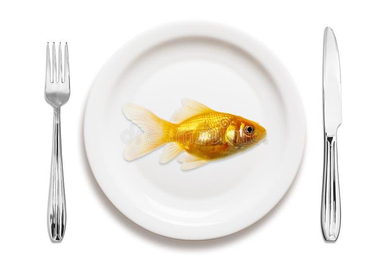 Goldfish auf einer Platte lizenzfreie stockbilder