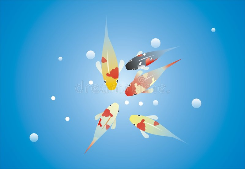 goldfish azjatykci karpiowy koi ilustracji