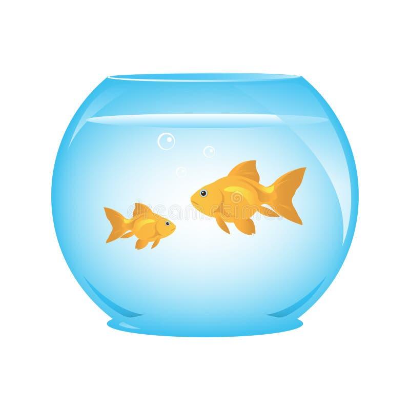 Goldfish in Bowl. Couple Goldfish in Bowl Illustration royalty free illustration